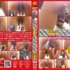 E72-04 Fastidious western toilet spycam. (HD 720p)