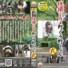 BFSO-05 40 Japanese girls captured pooping or peeing outdoor with multi view spy cameras.