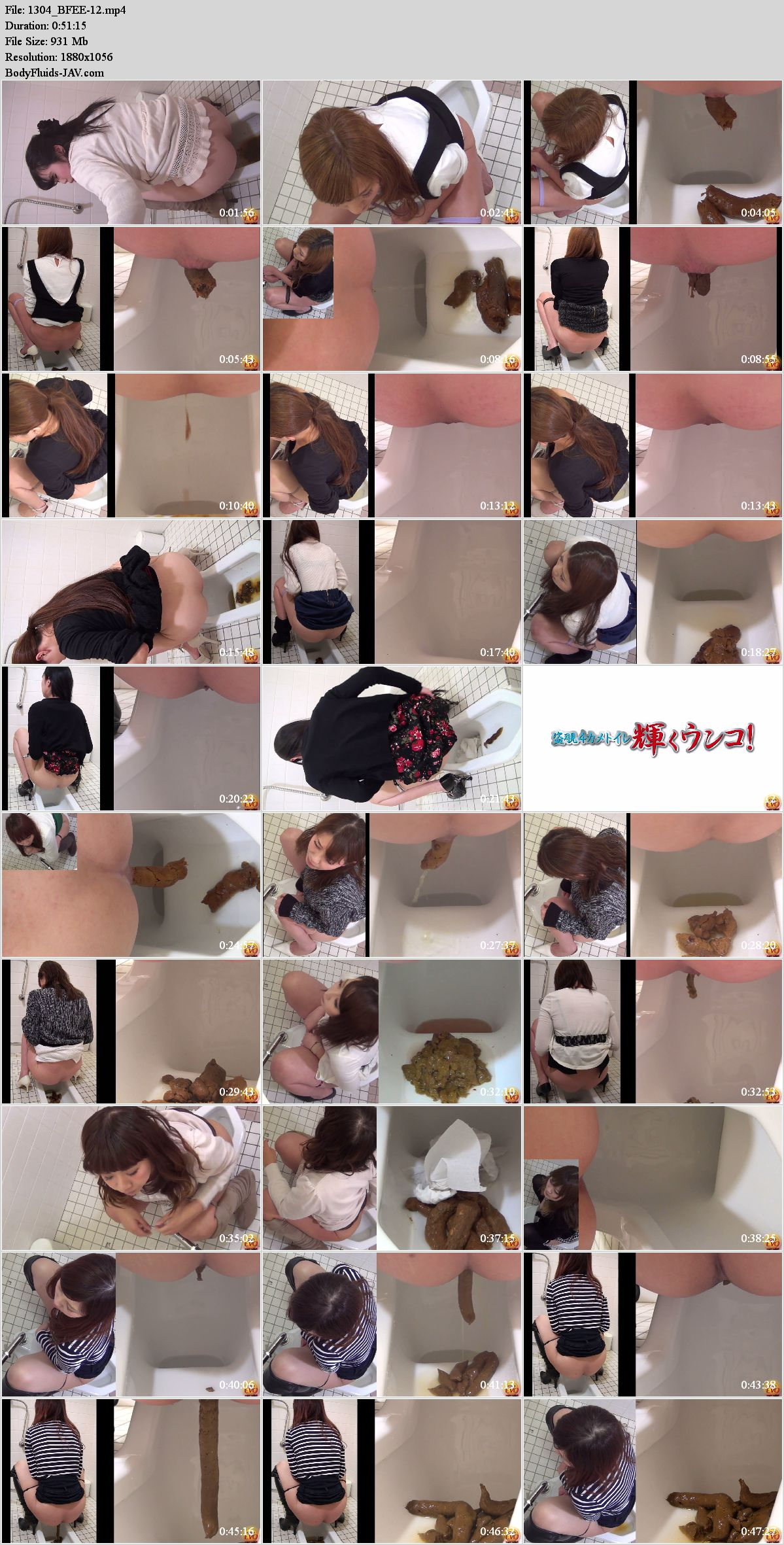 BFEE-12 Voyeur in toilet 4 angle view defecation girls. (HD 1080p)